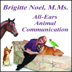 BRIGITTE NOEL / ALL-EARS ANIMAL COMMUNICATION