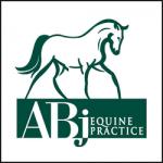 ABJ EQUINE PRACTICE / ANNE E McCABE, DVM, MS