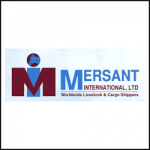 MERSANT INTERNATIONAL LTD