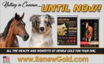 RENEW GOLD