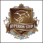 HYPERION STUD, LLC